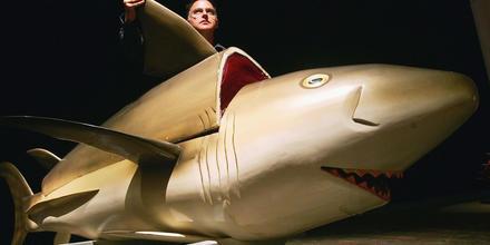 Ataud en forma de tiburón