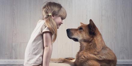 Perros se comunican desde cachorros