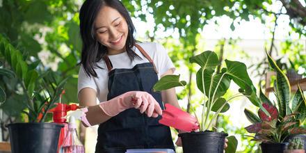 Productos clave para los amantes de la jardinería por menos de $20