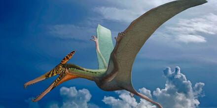 Dinosaurio volador gigante