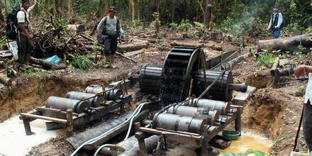 Amazonía extracción ilegal