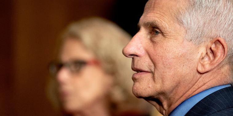 Anthony Fauci, el principal especialista en enfermedades contagiosas del país, compareció ante el Senado el 26 de mayo. Fauci ha pedido más investigaciòn sobre el origen del virus del COVID-19.