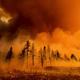 El incendio del complejo de Beckwourth devora el bosque de Doyle, en California