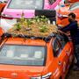 Taxistas siembran vegetales en sus autos
