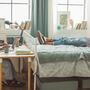 Lo que no te puede faltar en tu dormitorio universitario | Telemundo