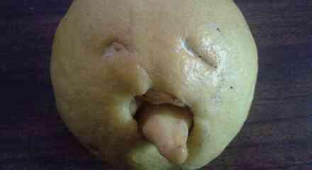 Limón sacando la lengua