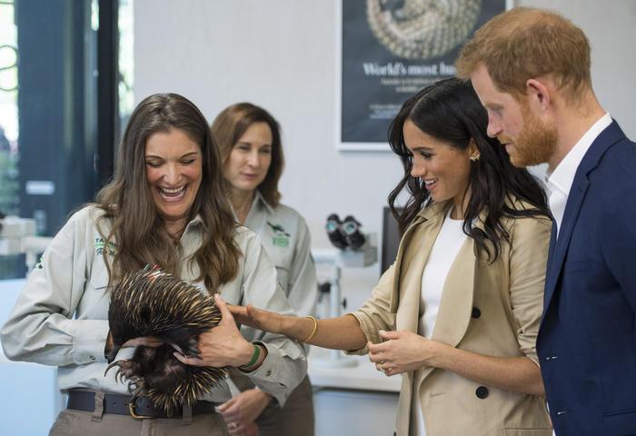 Los duques de Sussex durante una vista al zoológico de Taronga en Sidney.