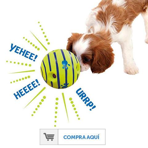 Lanzador De Comida Para Mascotas Aromatic Flavor Pet Supplies