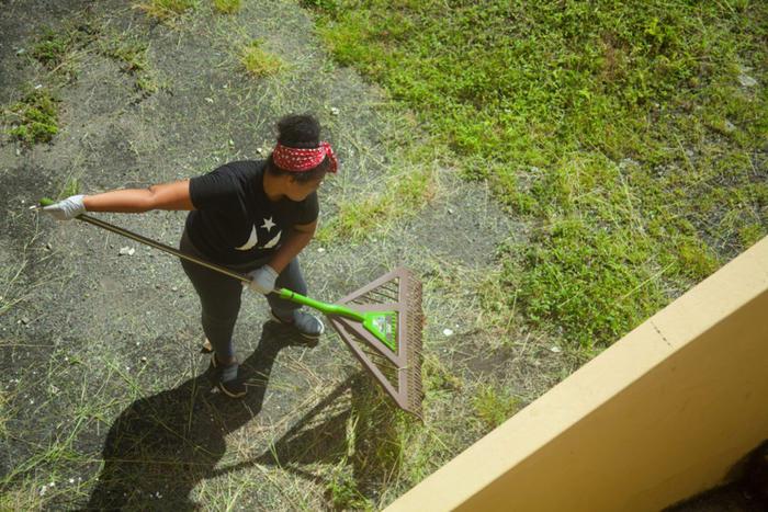 Johanna Domínguez rastrilla el césped en el patio trasero de la escuela Pedro G. Goyco.