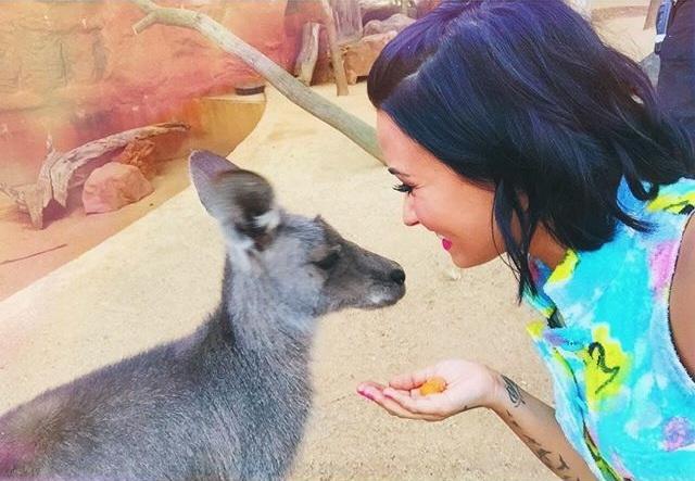 Demi Lovato canguro
