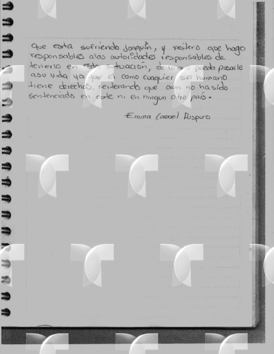 emma coronel carta