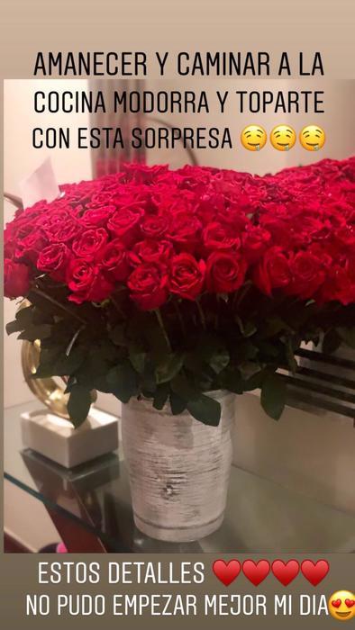 Flores rojas que regaló EPN a Tania Ruiz