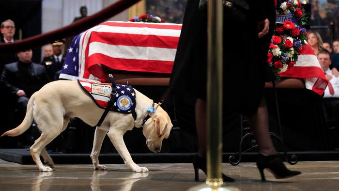 Sully, el perro de servicio del expresidente George H.W. Bush, presenta sus respetos a Bush mientras yace en el Capitolio de Estados Unidos en Washington, el martes 4 de diciembre de 2018