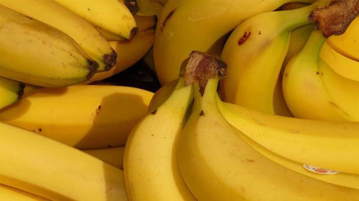 Los plátanos podrían desaparecer