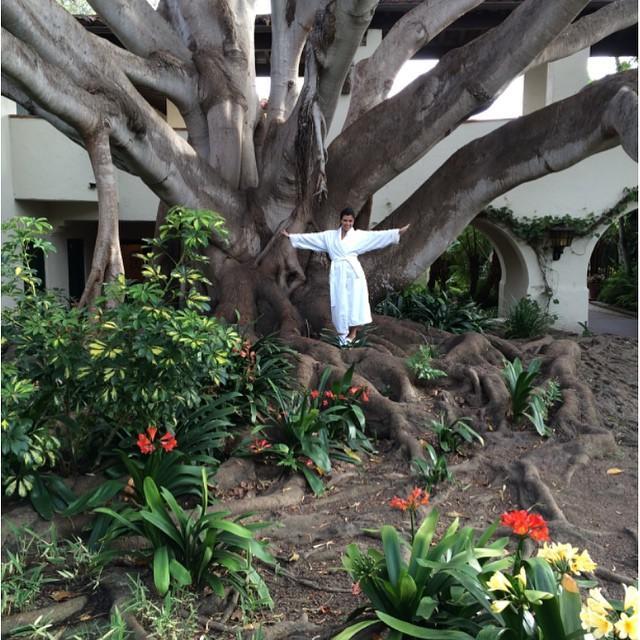 Kourtney Kardashian posó junto a un árbol