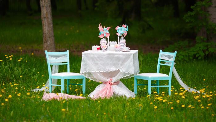 Decoración de cumpleaños infantil estilo picnic