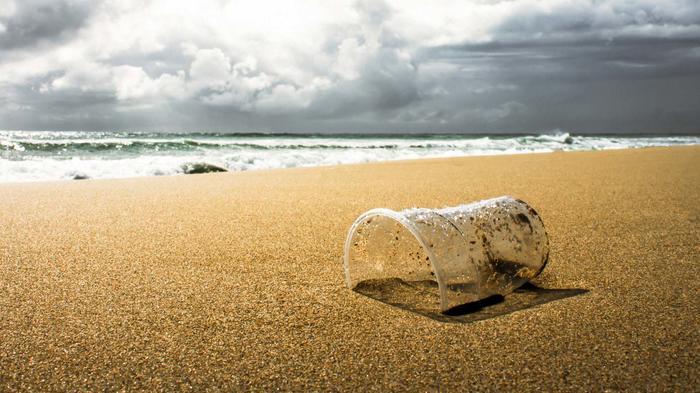 Plásticos contaminan playas