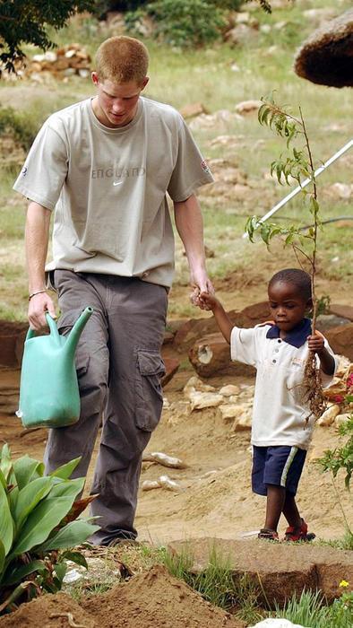 Príncipe Harry con Mutsu Potsane plantando un árbol