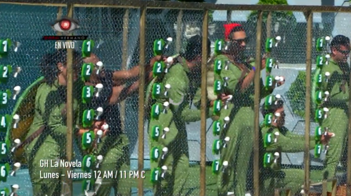 Los habitantes en la cuarta prueba del líder vestidos de tortugas