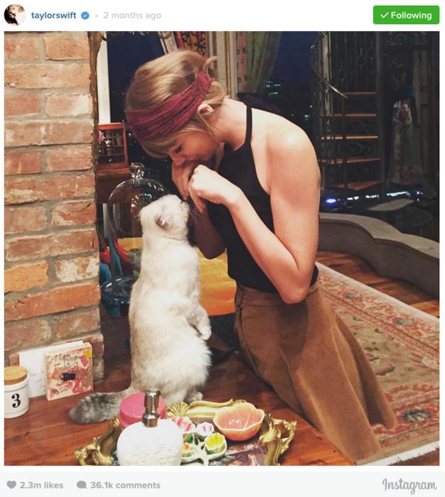 Taylor Swift con su gata Meredith