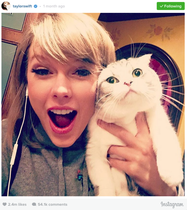 Taylor Swift junto a su gata Meredith