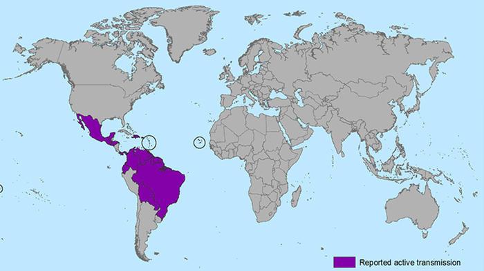 Países afectados por virus Zika