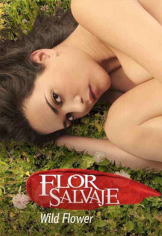 Flor Salvaje / Wild Flower