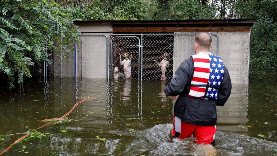 El voluntario Ryan Nichols rescata a unos perros que fueron abandonados por sus dueños durante el paso de la tormenta tropical Florence, en Carolina del Norte.