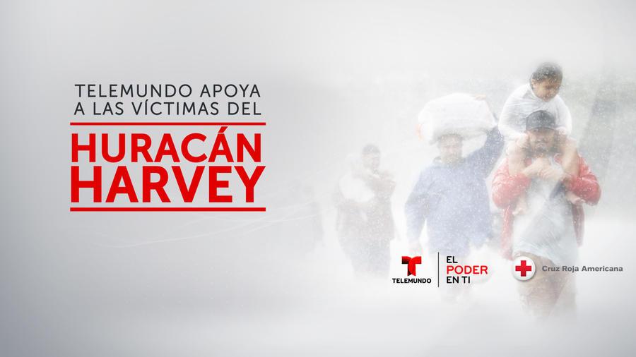 Cruz Roja, Huracán Harvey