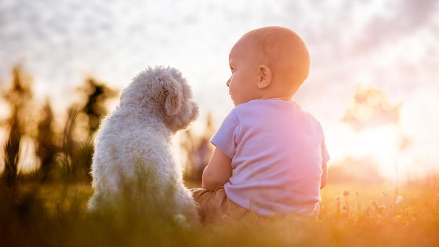 Bebé y cachorro al sol