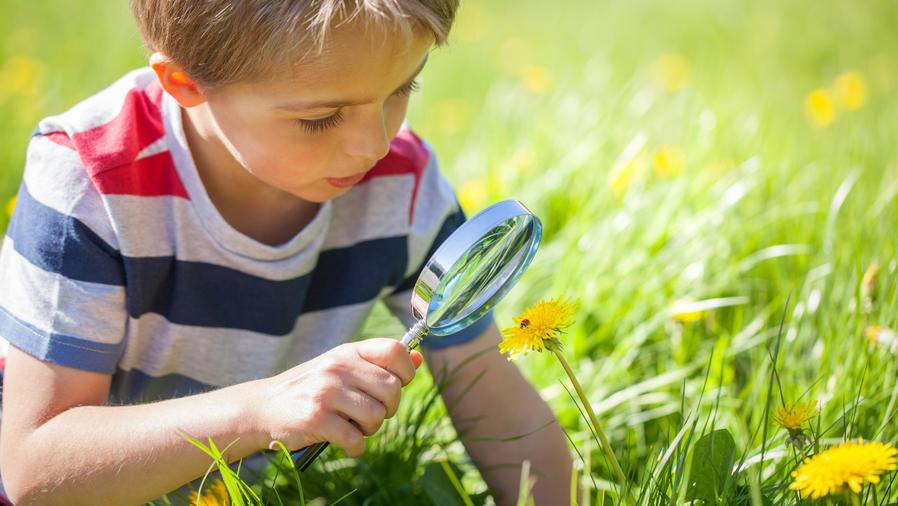 Niño explorando la naturaleza