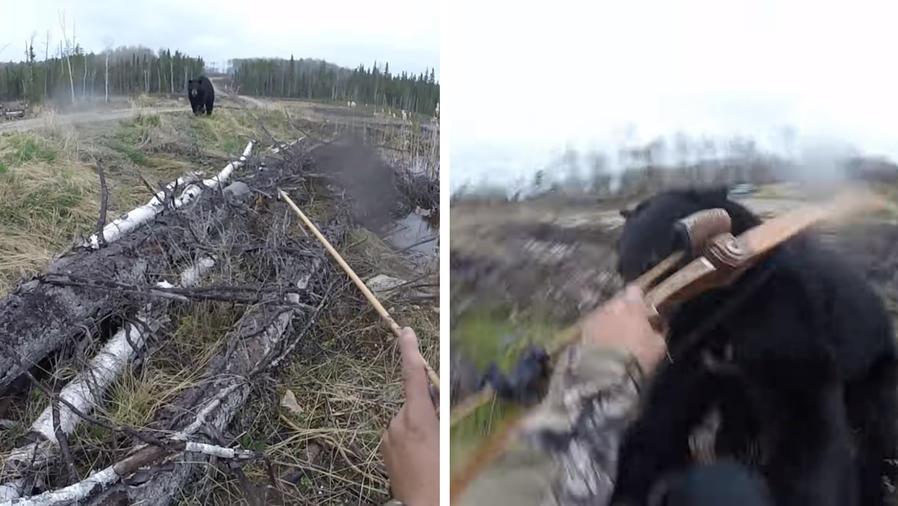 El aterrador ataque de un oso negro.