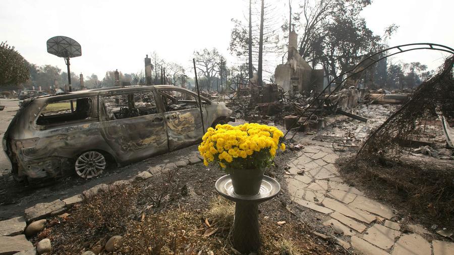 Flores en mitad de la destrucción de una vivienda en California
