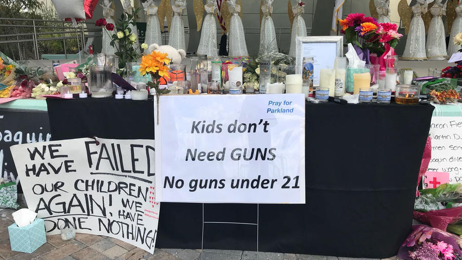 Carteles piden que no se vendn armas a menores de 21 años en EEUU