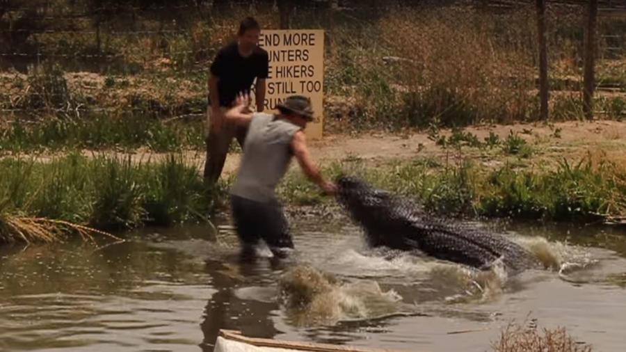 Ataque de caimán