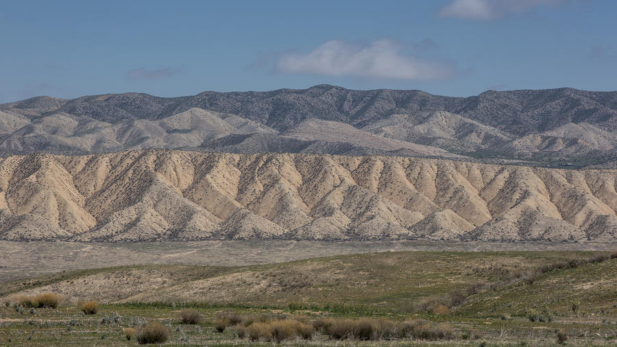 Exploring Carrizo Plain National Monument