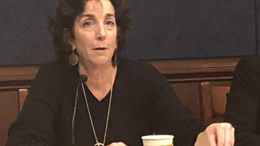 Ex embajadora de EEUU en México pide que AMLO fortalezca las instituciones independientes
