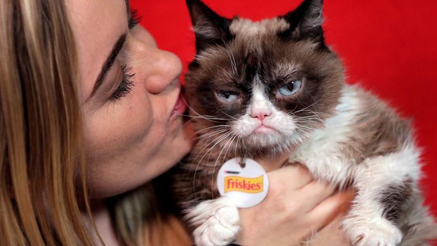 Grumpy Cat junto a su dueña Tabatha Bundesen.