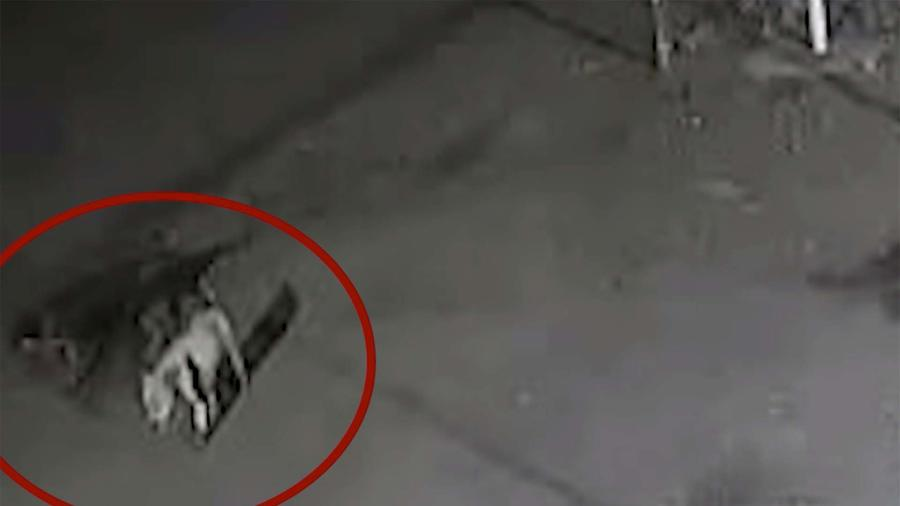 Mujer muere atacada por perros en parqueo de Costco en Bakersfield, California