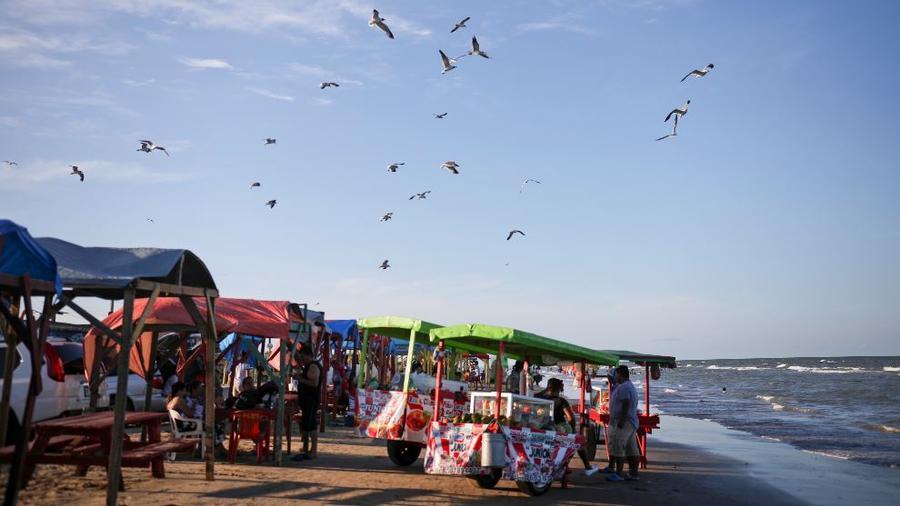 En esta foto del 2 de agosto de 2019, las gaviotas vuelan sobre camiones de comida en Playa Bagdad, cerca de la desembocadura del Río Grande, cerca de la ciudad fronteriza de Matamoros, México.