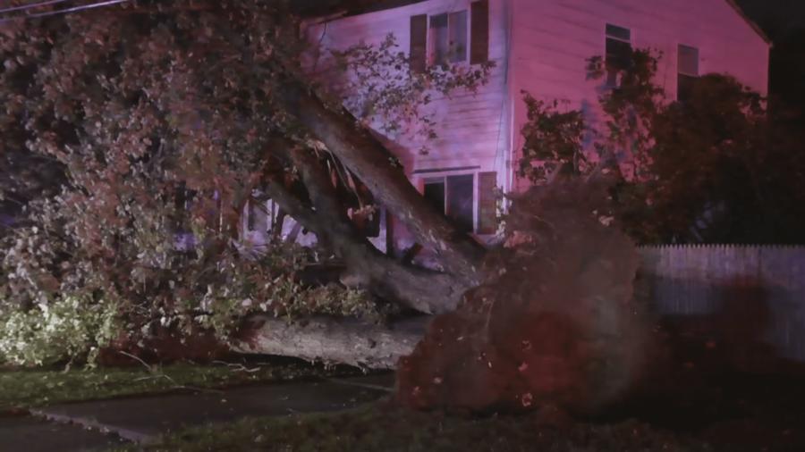 Un arbol caido por encima de una casa en Copiague, Nueva York.