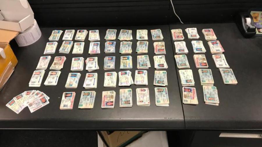 Algunas de las casi 3,000 licencias de conducir falsas que decomisó la CBP en Louisville.