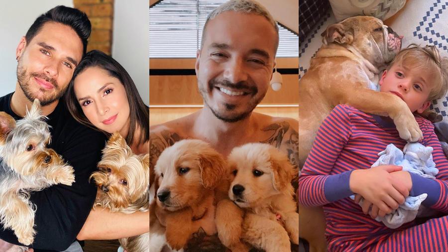 Carmen Villalobos y J Balvin con sus mascotas