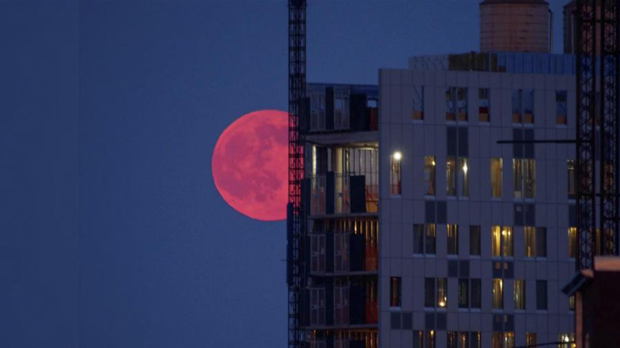 Eclipse de luna de fresa