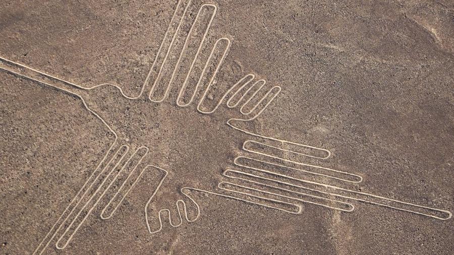Gato líneas de Nazca