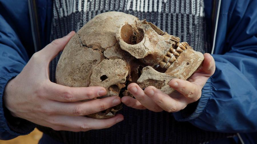 Cráneo humano descubierto en el norte de Islandia