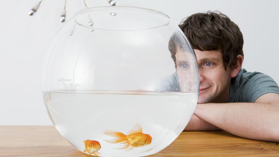 Ideas de regalos para hombres del signo acuario