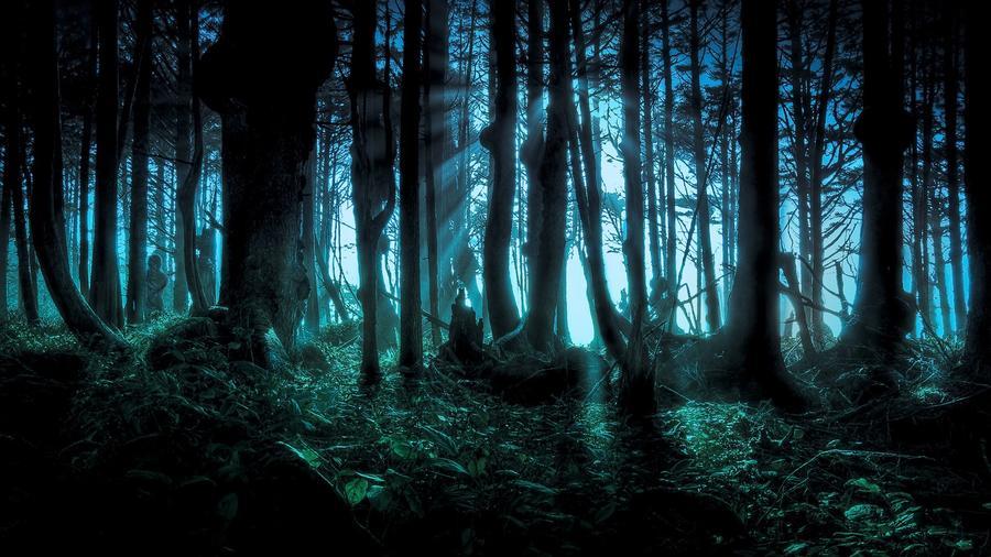 dark-forest-image.jpg