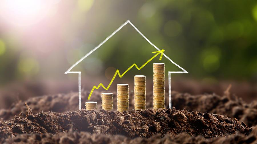 Casa con dinero creciendo sobre la tierra