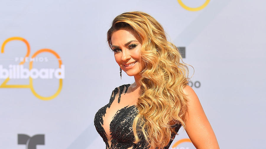 Aracely Arámbula